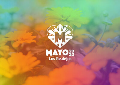 Mayo Virtual 2020