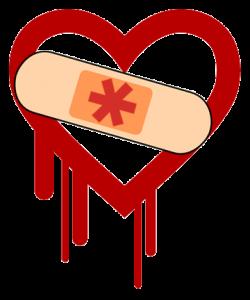 Heartbleed: ¿Tus datos personales han sido comprometidos?